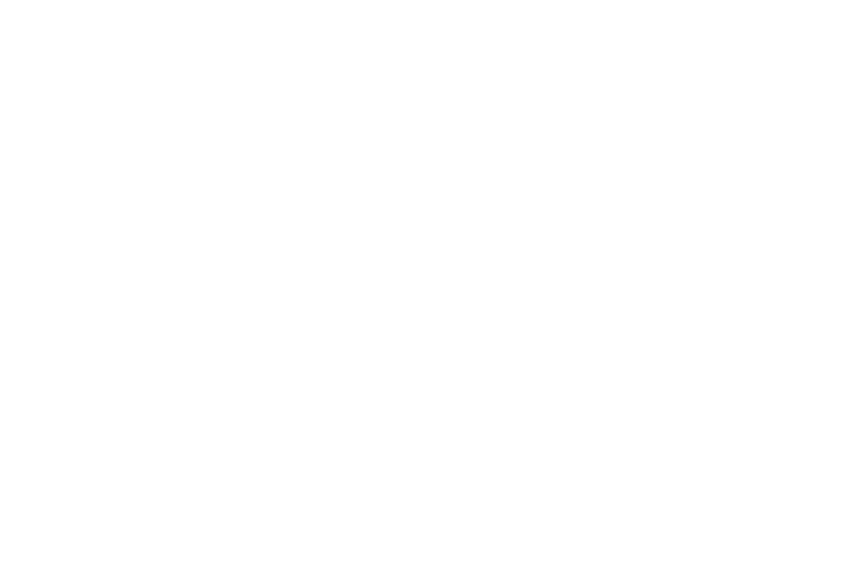 Immagine sito Summeet Logo footer ACM bianco